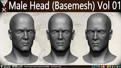 Male Head Basemesh Vol 01