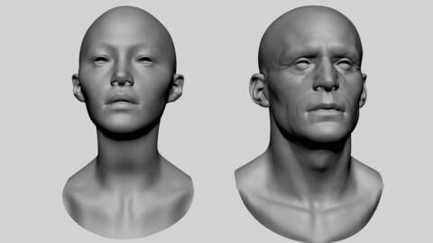 Base Male and Female Head