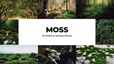 20 Moss LUTs and Lightroom Presets