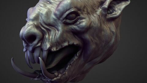 HEAD18 high poly sculpt
