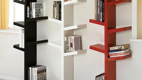 F603 Bruno Bookshelf Modern Tree Bookcase DVX