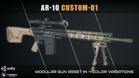 AR-10 Custom-01