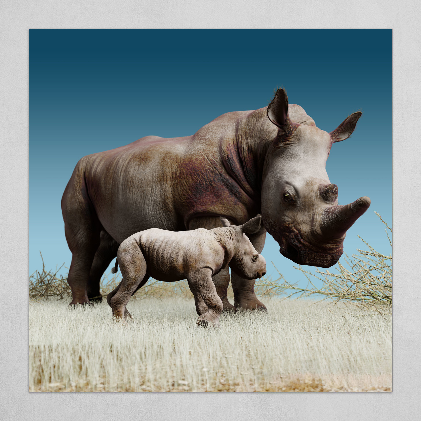 Mother and child. White Rhinoceros. 1