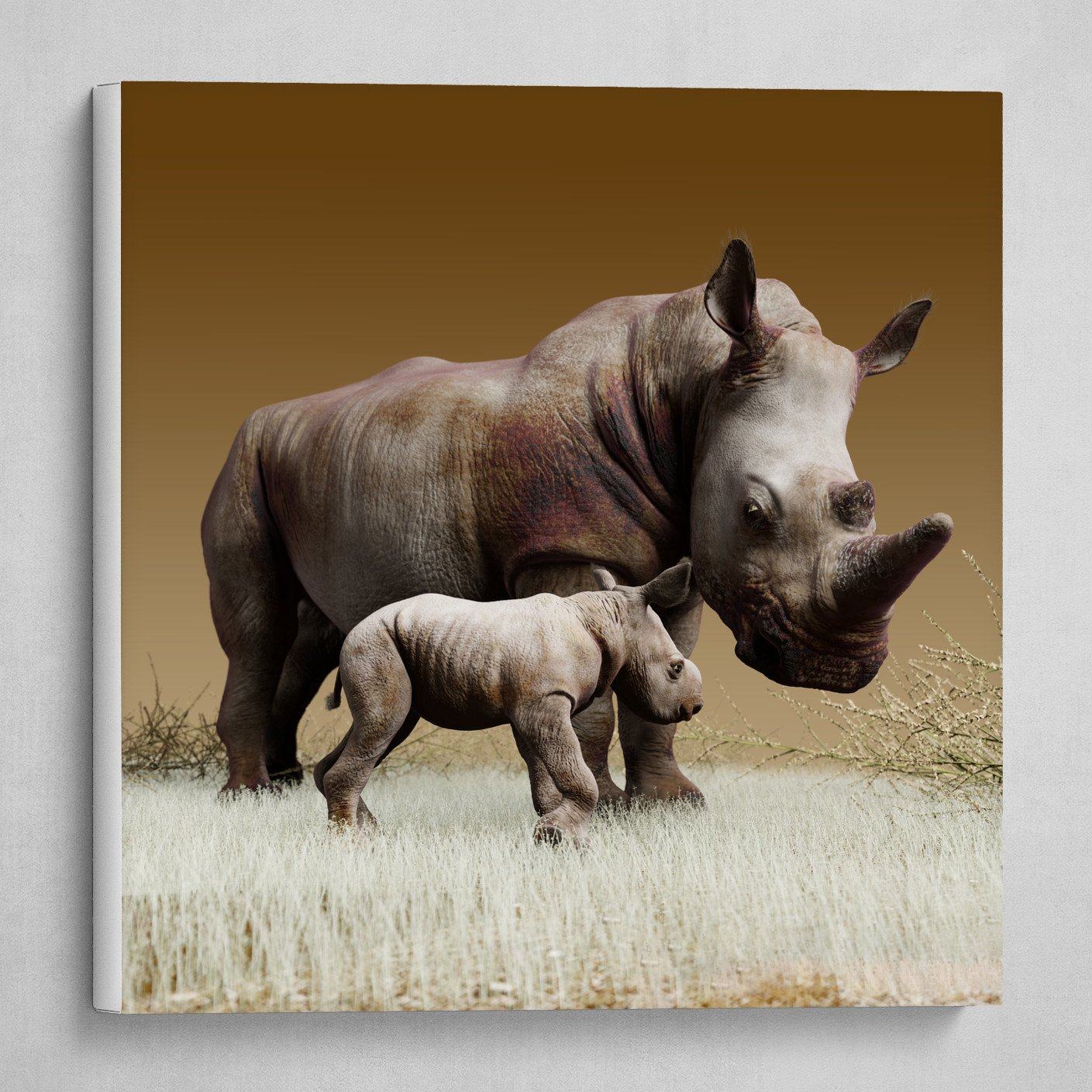 Mother and child. White Rhinoceros. 2