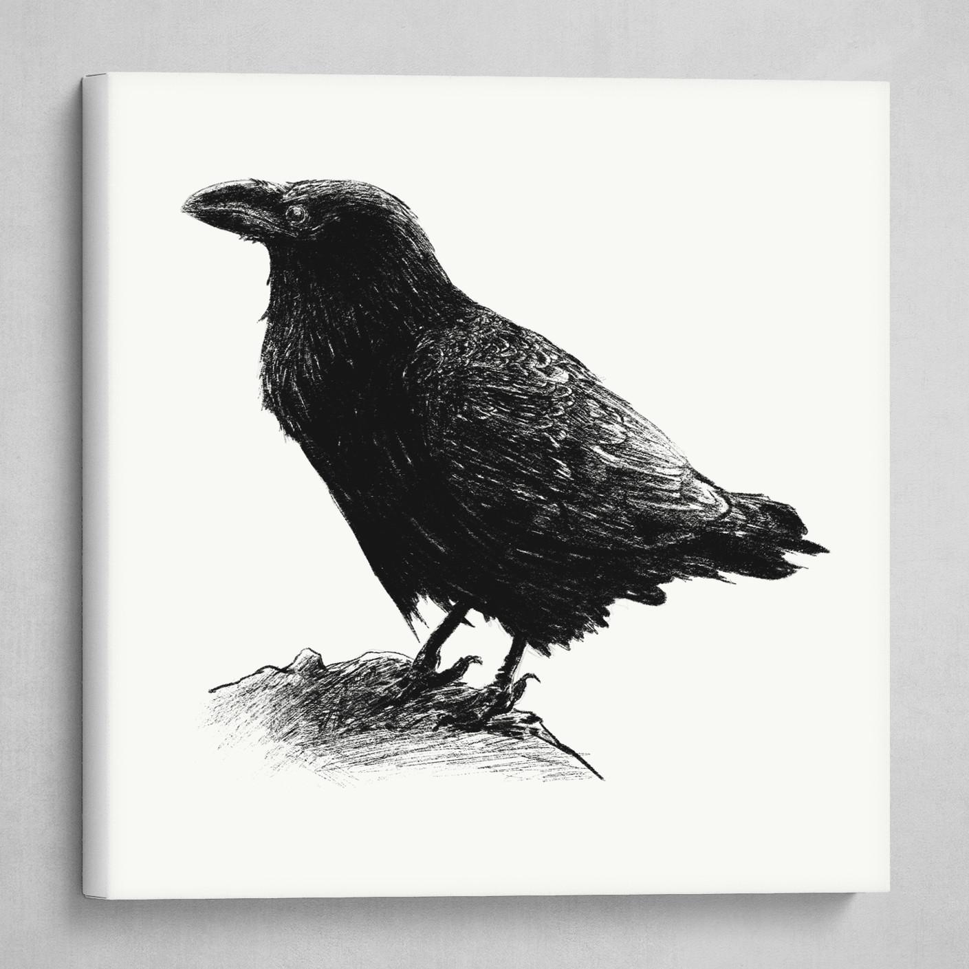 Inky Crow