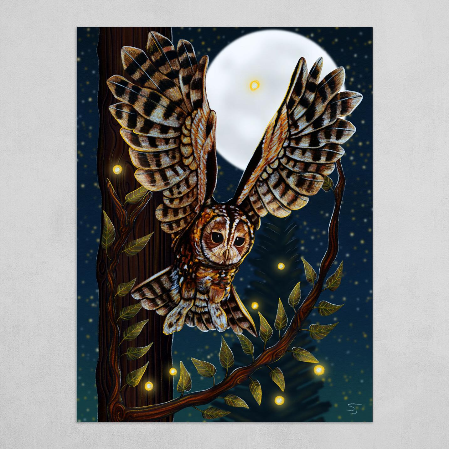 Swooping Tawny Owl