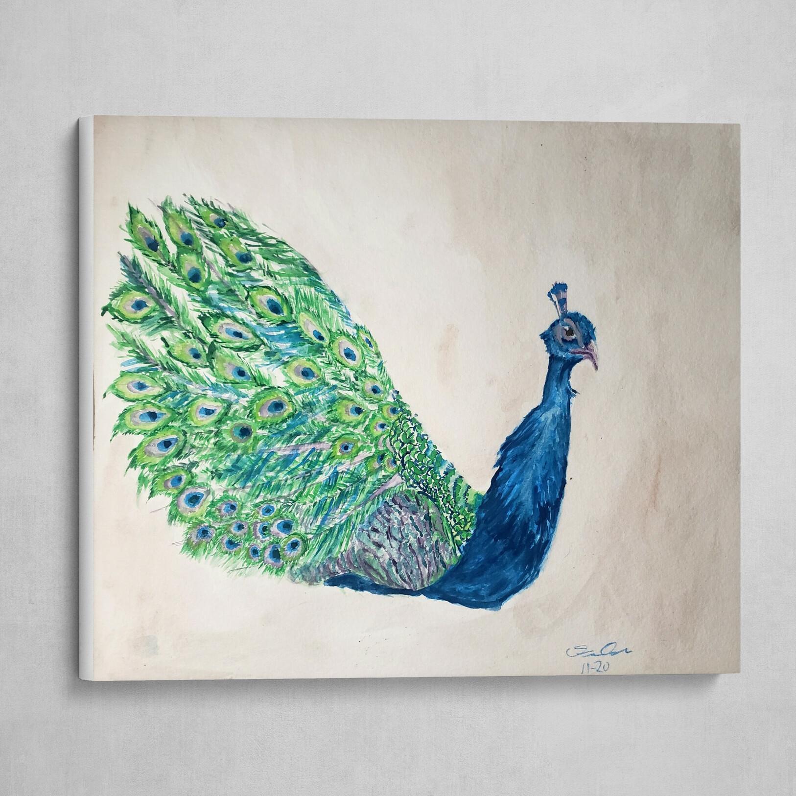 Simple Peacock