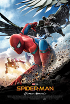 Spiderman poster 6 large