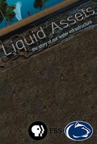 Liquid assets cover 01