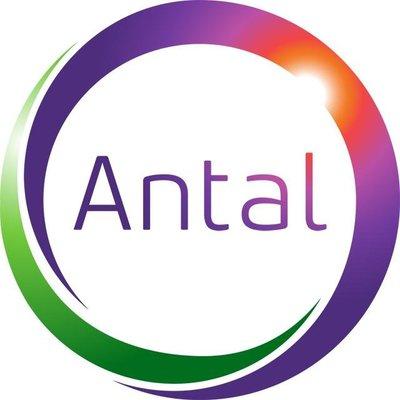 Jobs at Antal International