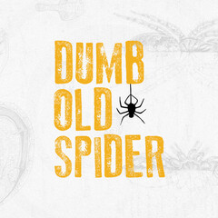 DumbOldSpider LLC